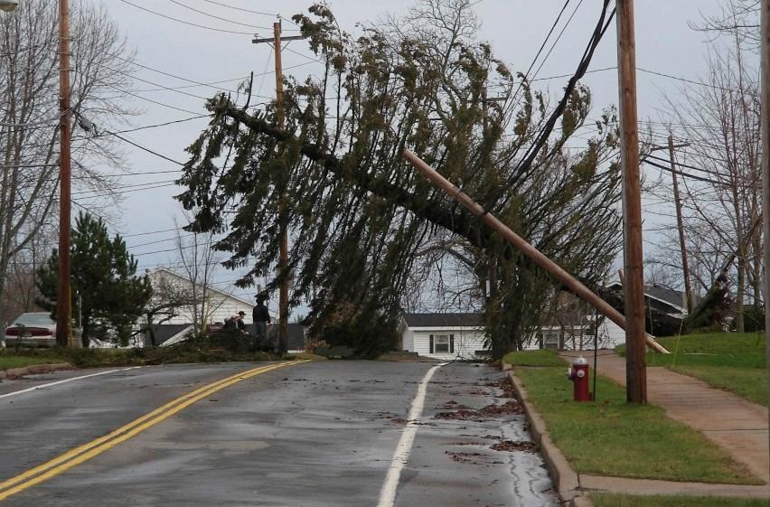 wind storm pt 2 taken with nikon