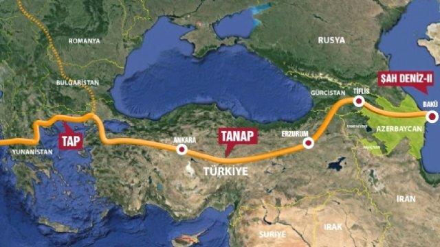 tanap-222