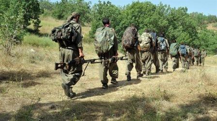 PKK 13