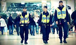 avro polis 33