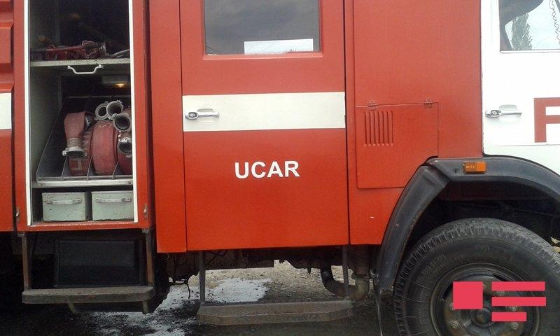 ucar 01