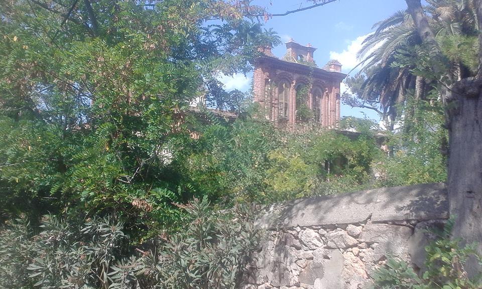 tortski-evi
