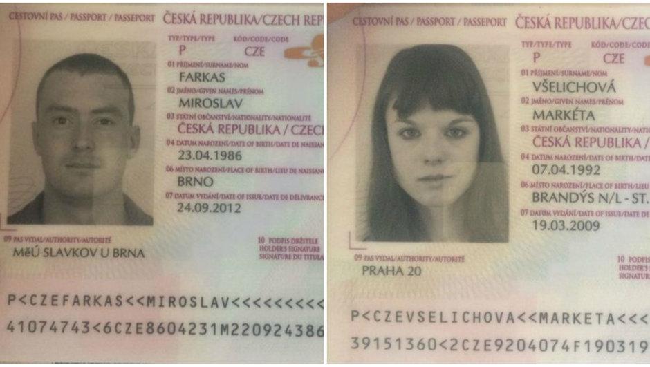 cexiya-pkk