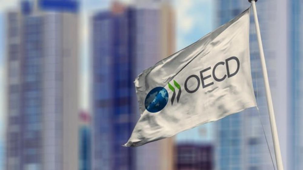 """OECD: """"Pandemiyanın zərəri qarşıdakı aylarda müşahidə ediləcək"""""""